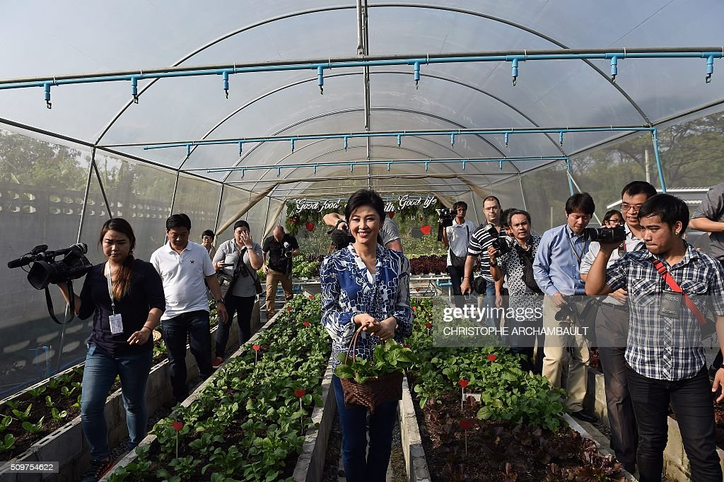 Deposed Thai prime minister Yingluck Shinawatra (C) carries a basket of produce surrounded by mainly foreign media who were invited to her compound where the ex-premier gave a tour of her vegetable garden in Bangkok on February 12, 2016. Barred from discussing politics by the Thai junta, ousted Prime Minister Yingluck Shinawatra opened up her Bangkok home on February 12 to talk about her new passion: vegetables. AFP PHOTO / Christophe ARCHAMBAULT / AFP / CHRISTOPHE ARCHAMBAULT