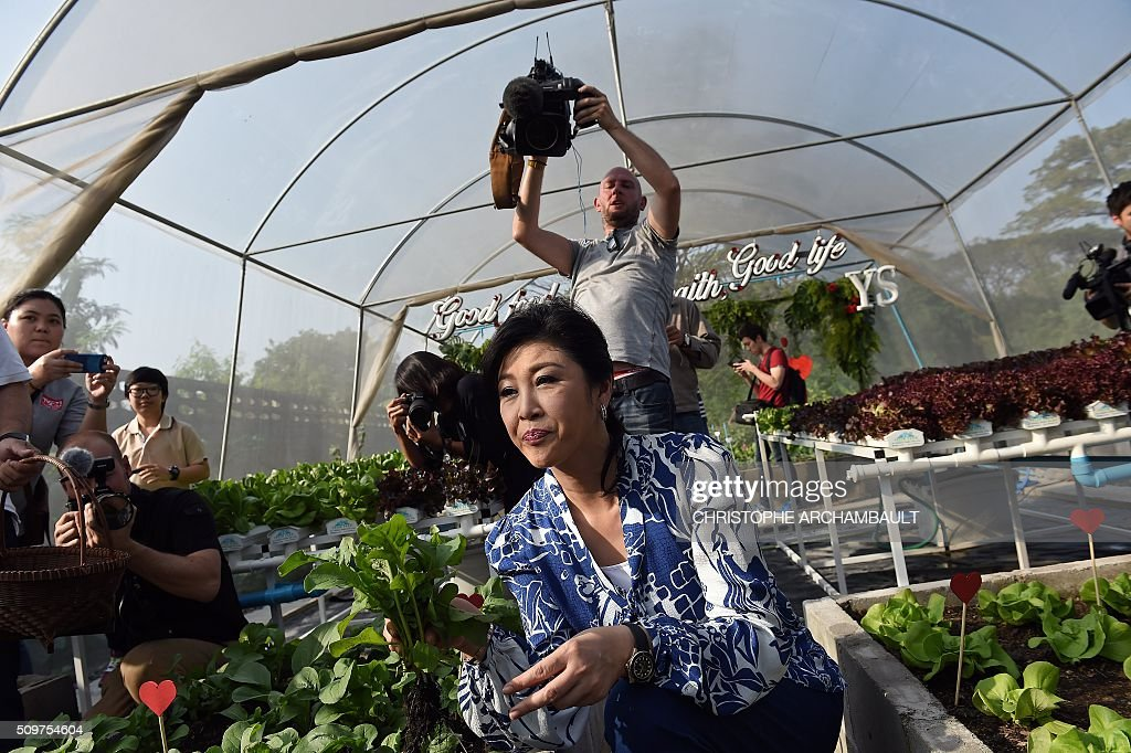 Deposed Thai prime minister Yingluck Shinawatra (C) shows off freshly picked produce to mainly foreign media who were invited to her compound where the ex-premier gave a tour of her vegetable garden in Bangkok on February 12, 2016. Barred from discussing politics by the Thai junta, ousted Prime Minister Yingluck Shinawatra opened up her Bangkok home on February 12 to talk about her new passion: vegetables. AFP PHOTO / Christophe ARCHAMBAULT / AFP / CHRISTOPHE ARCHAMBAULT