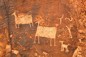 ancient petroglyphs of sheep carven in stone