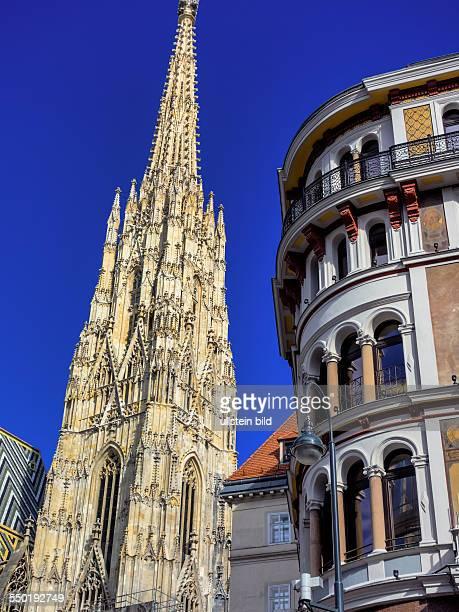 Der Stephansdom in Wien Österreich Eines der Wahrzeichen der Stadt