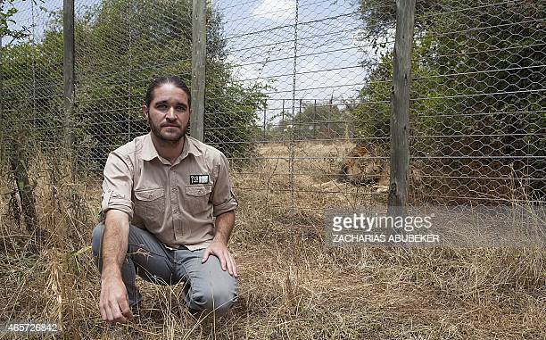 LEBHOUR Derek Betts Managing Director of Born Free Ethiopia poses outside a lions cage on February 18 2015 The Ethiopian chapter of Born Free houses...