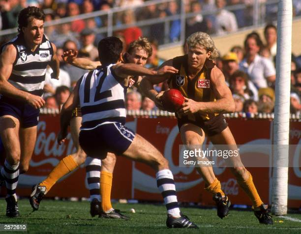 Dermott Brereton of the Hawks in action during the 1989 AFL Grand Final played between the Hawthorn Hawks and the Geelong Cats held at the Melbourne...