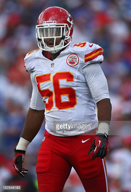Derrick Johnson of the Kansas City Chiefs during an NFL game against the Buffalo Bills at Ralph Wilson Stadium on September 16 2012 in Orchard Park...