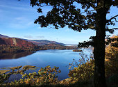 """The famous """"surprise"""" view of Derwent Water in the English Lake District -  autumn colours framed by the silhouette of an English Oak tree"""