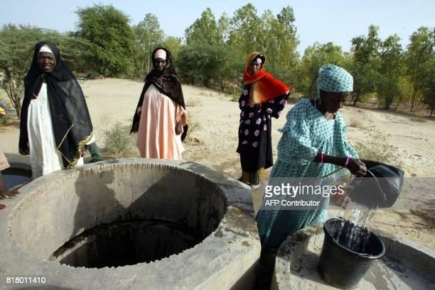 Des femmes puisent de l'eau pour arroser les plants de légumes d'un jardin situé à l'orée du désert le 13 avril 2002 près de Tombouctou Grâce au...
