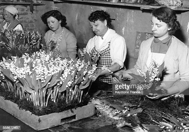 Des jeunes femmes préparent des bouquets de muguet chez un horticulteur en prévision de la tradition du 1er mai le 27 avril 1953 à Créteil France