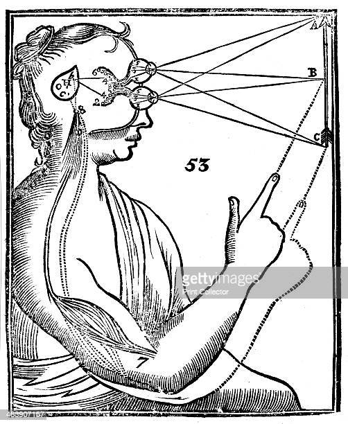 Descartes' idea of vision [1692] The passage of nervous impulses from the eye to the pineal gland and so to the muscles From Rene Descartes' Opera...