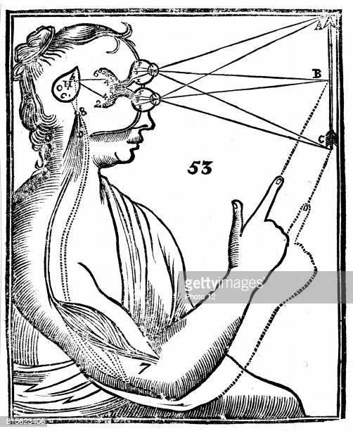 Descartes' idea of vision showing passage of nervous impulse from the eye to the pineal gland and so to the muscles From Rene Descartes' 'Opera...