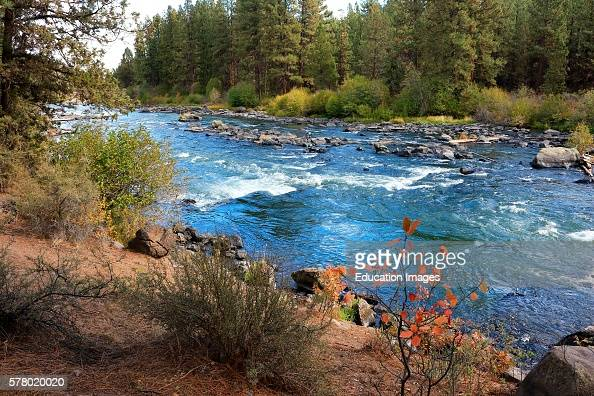 Deschutes River viewed from the Deschutes River Trail in Bend Oregon