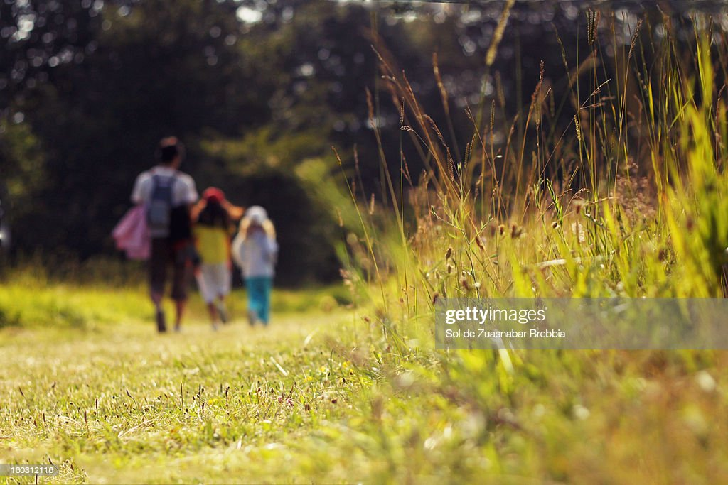 Descubriendo. Un paseo por la naturaleza. : Stock Photo