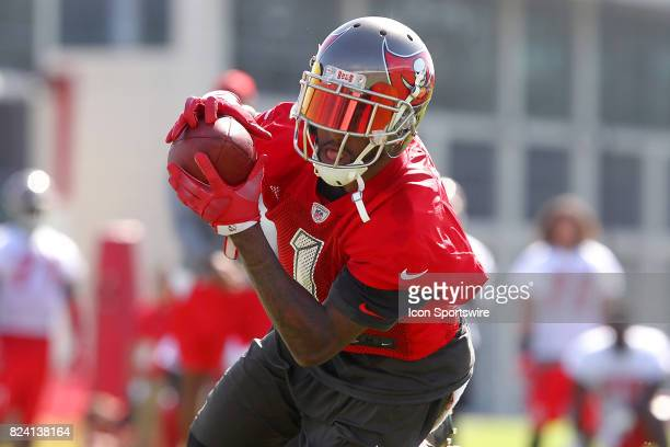 DeSean Jackson takes off from line of scrimmage makes the catch and then carries the ball upfield during the Tampa Bay Buccaneers Training Camp on...