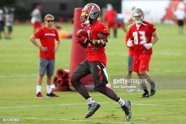 DeSean Jackson taps his toes in the back of the end zone for a touchdown during the Tampa Bay Buccaneers Training Camp on July 29 2017 at One...