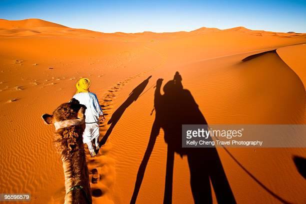 Desert and camel driver