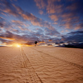Tyre track in desert at sunset in dramatic sky.