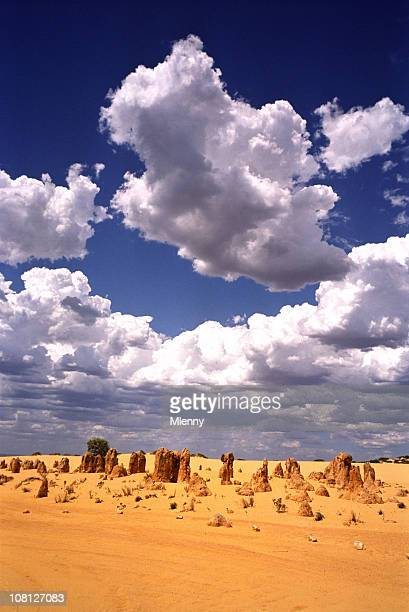 desert australia pinnacles