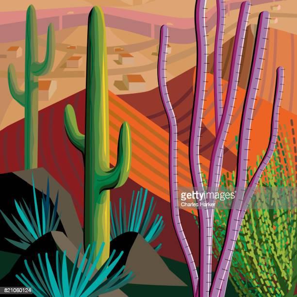 Desert, Cactus, Mountains Landscape Illustration in Square Format