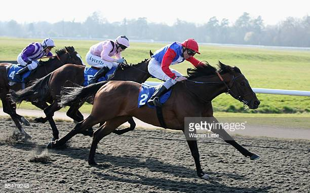 Desert Dreamer ridden by Alan Daly wins the AllWeather Trainers Championship at Lingfield Park on March 18 2009 in Lingfield England