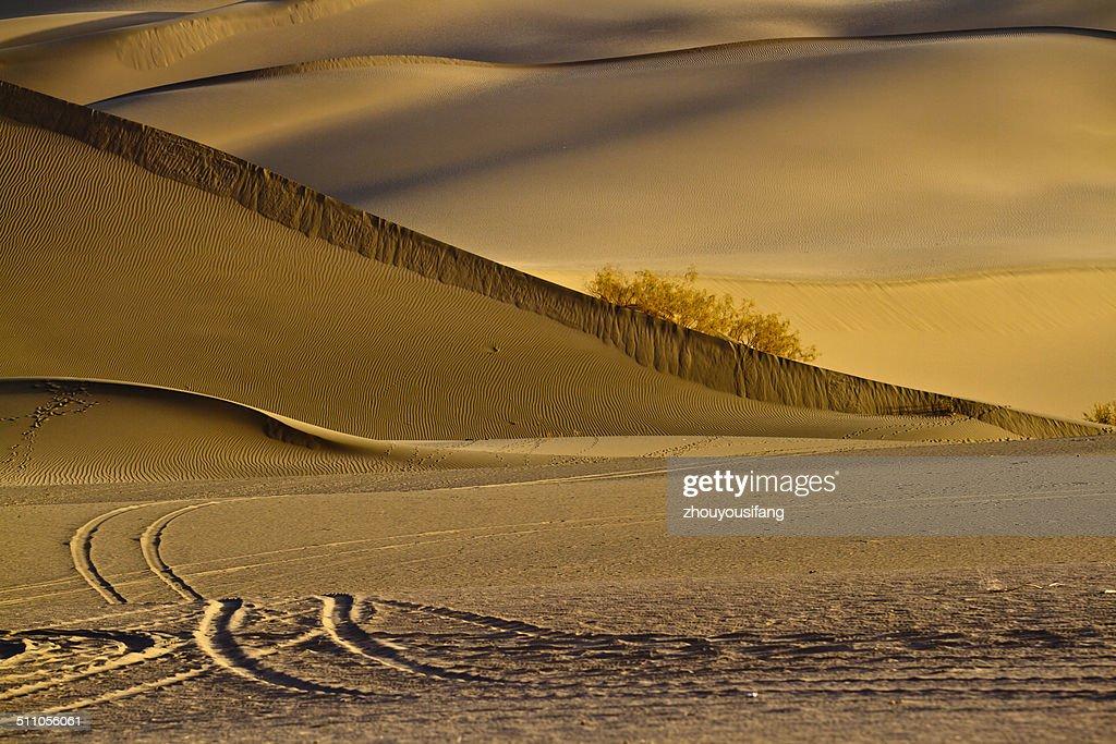 Desert fall scenery