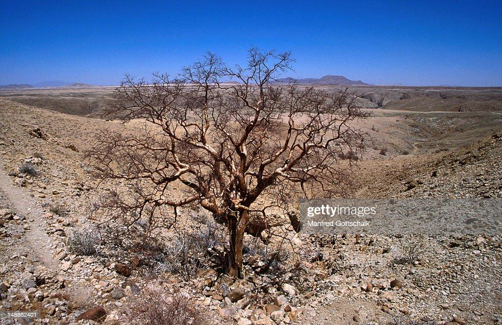Desert hideaway of the German geologists Henno Martin and Hermann Korn during WWII, Kuiseb, Namib-Naukluft Desert Park : Stock Photo