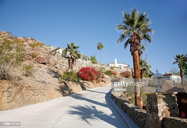Desert Hilllside Modernism Living.