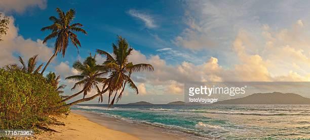 Desert island sunrise golden beach palm trees blue ocean panorama