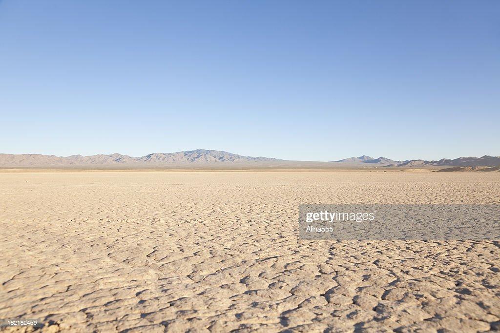 Desert Nevada landscape