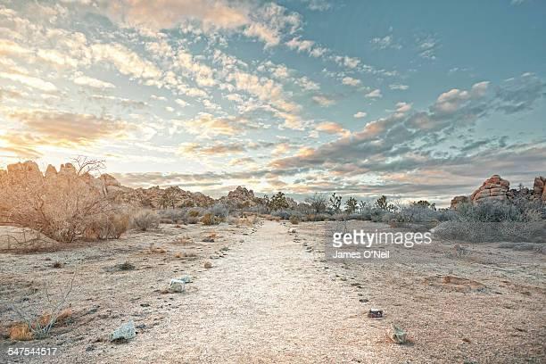 Desert path at sunset