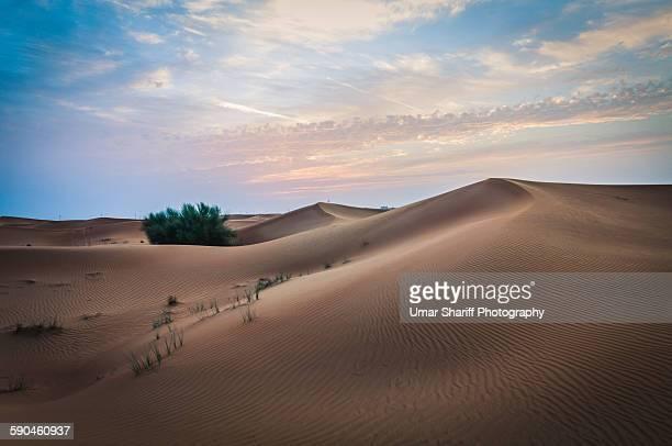 Desert sand dunes landscape in Hatta Desert UAE