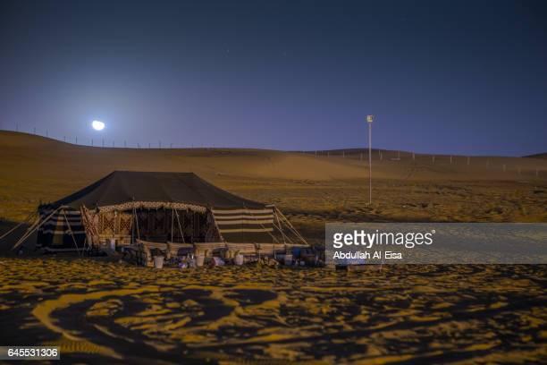Desert Winter Camp