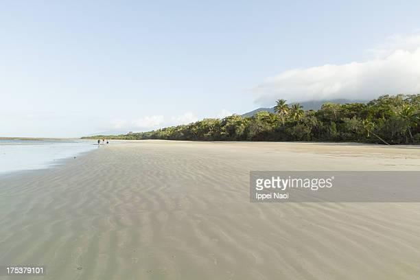 Deserted beach and tropical rainforest, Queensland