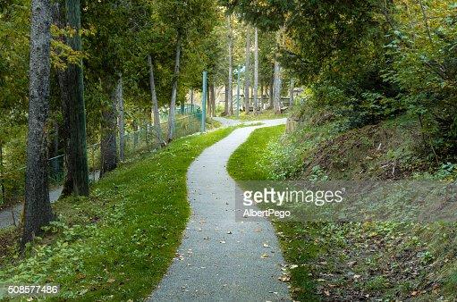 Einsames Waldweg : Stock-Foto