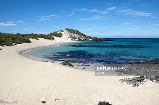 Einsames Galapagos Strand mit weißem sand