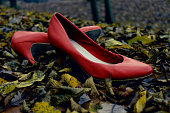 Deserted Red Shoes In Forest