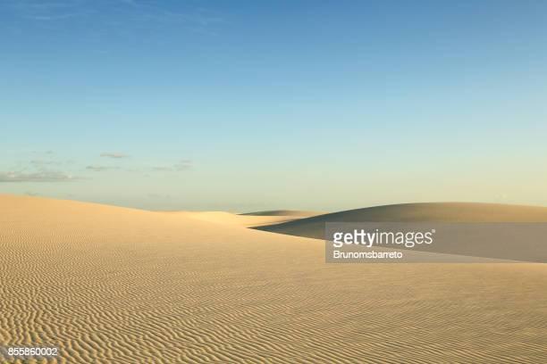 Dunes de sable désertes des feuilles maranhenses - grand lac