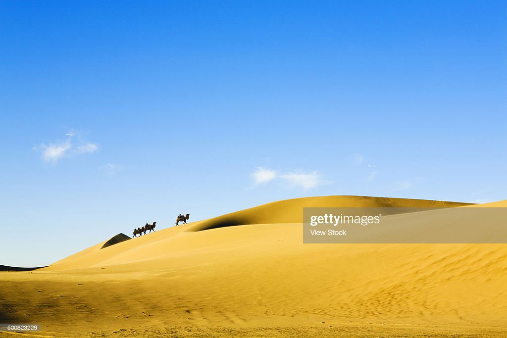 Desert,Inner Mongolia,China
