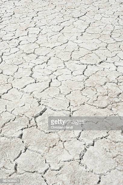 Desiccation cracks, pattern, of a dried up salt lake, Putre, Arica and Parinacota Region, Chile
