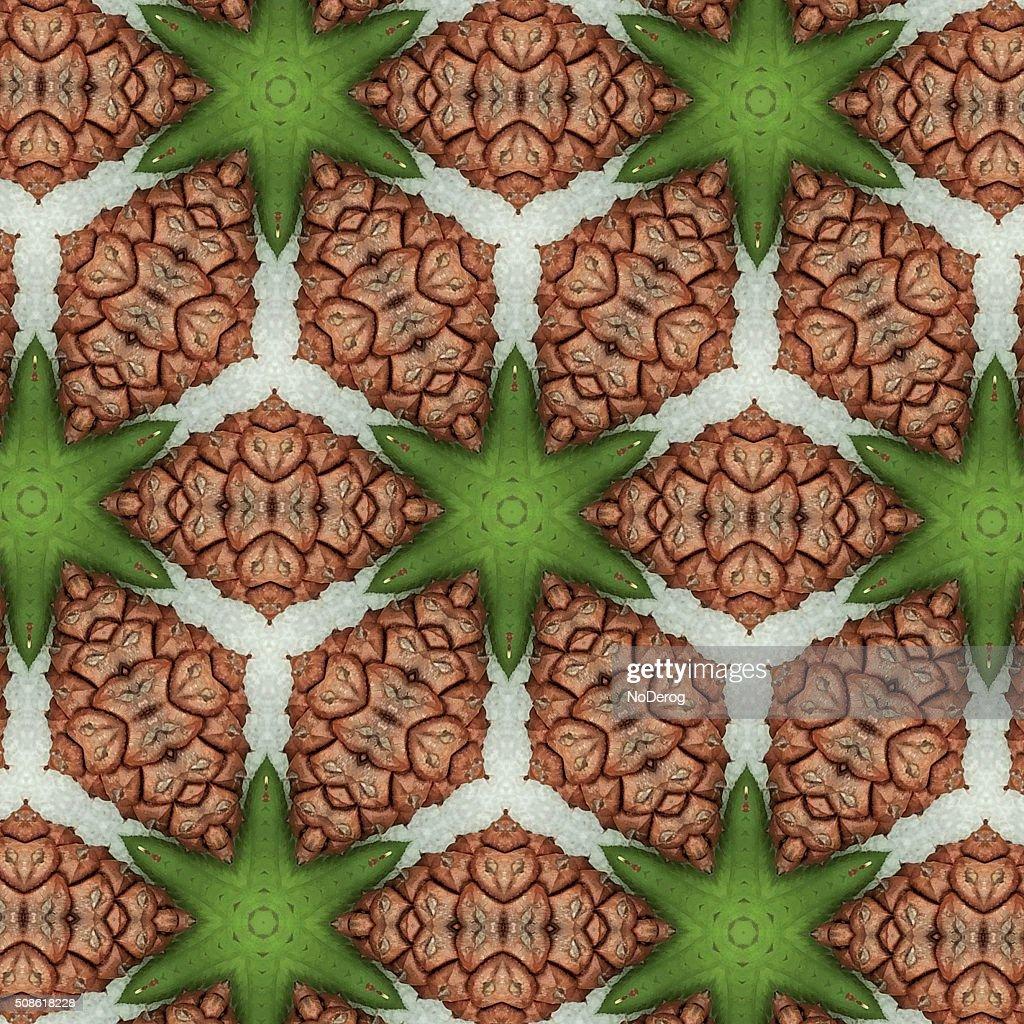 Design pattern based on pine cone motif : Stock Photo