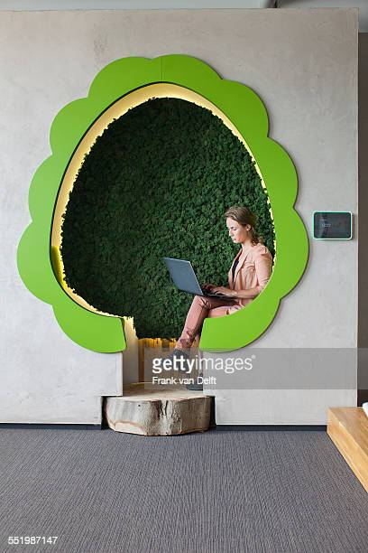 Designer working on laptop in tree shaped office space