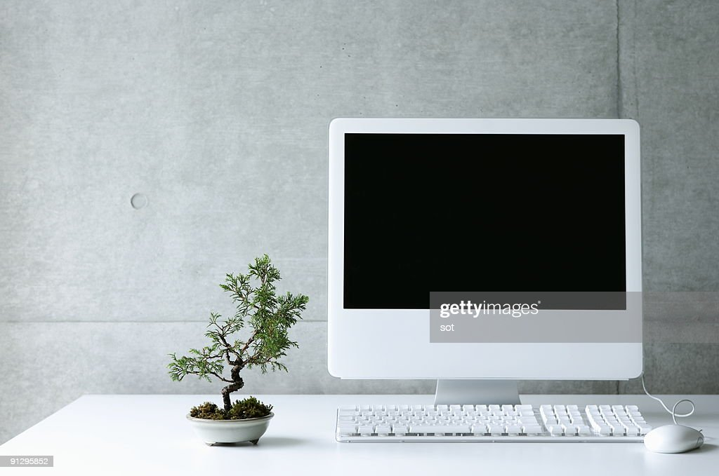 Desktop PC with small bonsai : Stock Photo