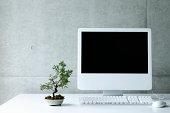 Desktop PC with small bonsai