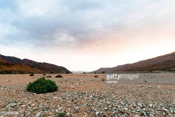 Postre tierra, Richtersveld, Sudáfrica