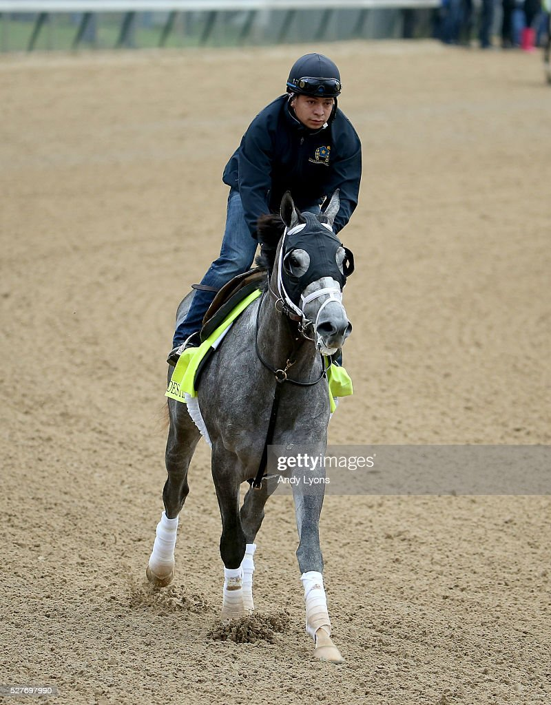 Destin runs on the track during the morning training for the 2016 Kentucky Derby at Churchill Downs on May 03, 2016 in Louisville, Kentucky.
