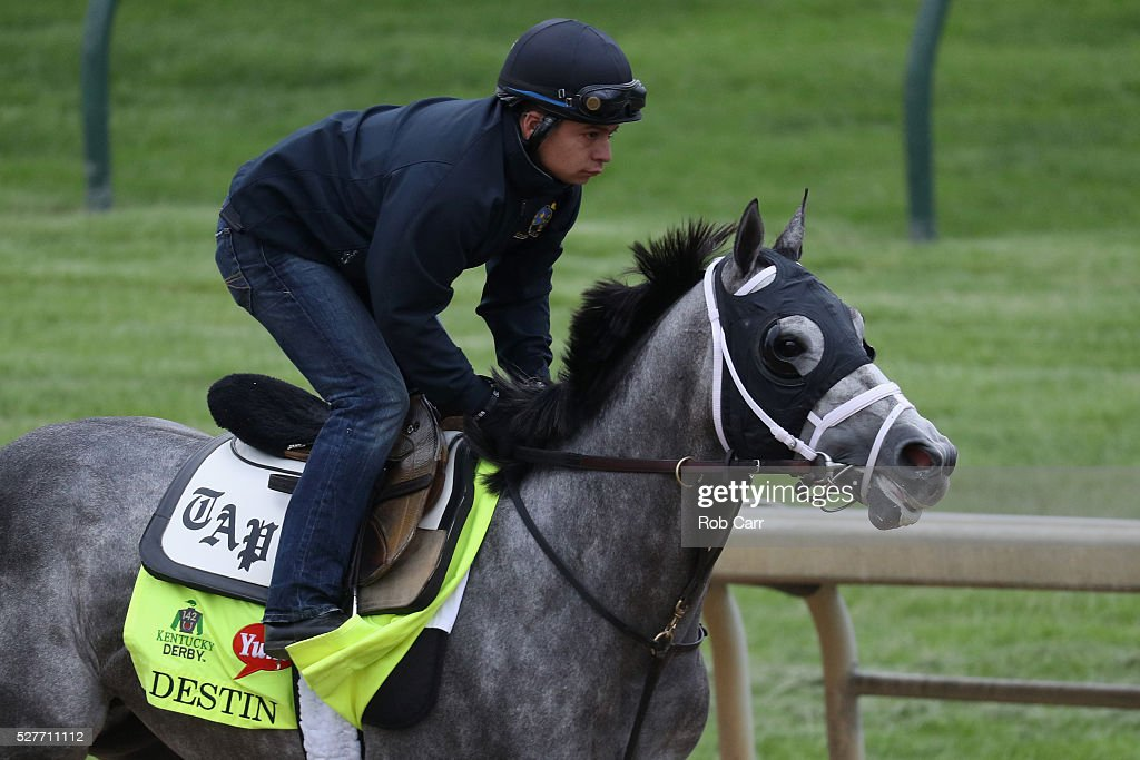 Destin trains on the track for the Kentucky Derby at Churchill Downs on May 03, 2016 in Louisville, Kentucky.