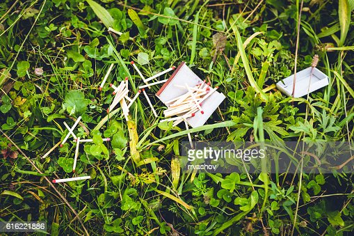Destroyed box of matches on the green grass. : Stock-Foto
