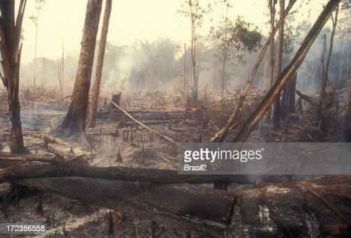 Destruction Global Warming