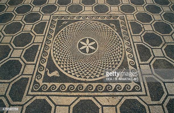 Detail from the floor mosaic with geometric motifs in Roman house n 1 dating from the Roman Empire in Ampurias Greek city founded in the 6th century...