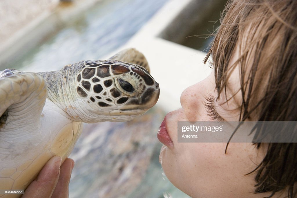 Detail of a boy kissing a turtle : Stock Photo