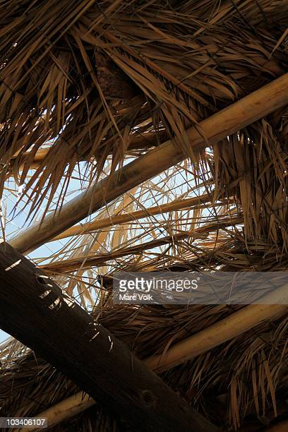 Detail of a damaged thatched roof