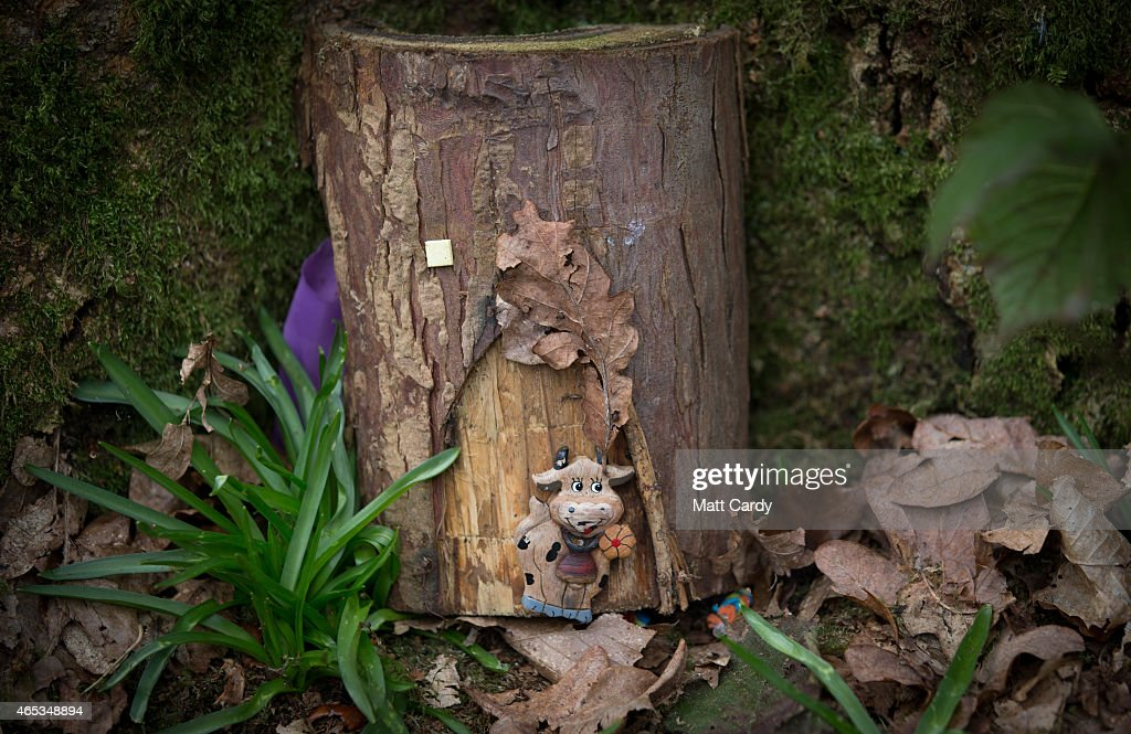 Detail of a fairy door at the bottom of a tree at wayford for Fairy doors for trees