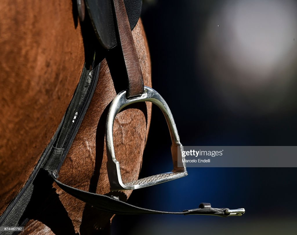 Detail of a horse during a match between La Dolfina and La Albertina as part of the HSBC 124°° Argentina Polo Open at Campo Argentino de Polo on November 11, 2017 in Buenos Aires, Argentina.